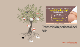 Transmisión perinatal del VIH