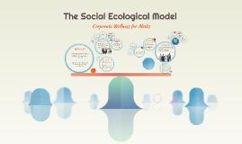 Theory<Model