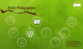 Fiche Pédagogique