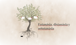 eutanasia, distanasia y ortotanasia