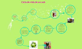 Copy of ciclo de vida de un usb