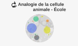 Analogie de la cellule