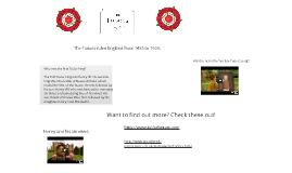 Copy of The Tudors
