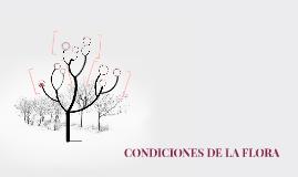 CONDICIONES DE LA FLORA