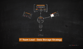 IT Team Lead - Data Storage Strategy