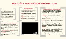 EXCRECIÓN Y REGULACION DEL MEDIO INTERNO