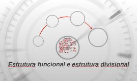 Estrutura funcional e estrutura divisional