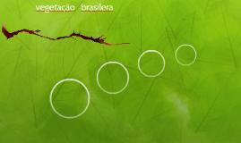 vegetação   brasilera