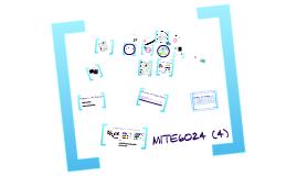 MITE6024 (4)