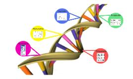 Mutaciones haploides