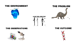 Save The Creative. A Scientific Investigation of Promising Mutations in the Creative Community