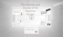 The main funcion of the Digestive system