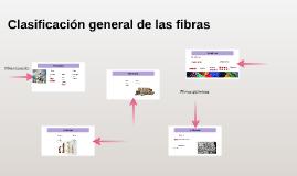 Clasificación general de las fibras