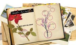 Copy of DESAFÍO DEL AMOR SEMANA 5