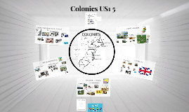 Colonies US1 5