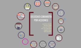PERFIL DE LA SOCIEDAD ENCOMANDITA POR ACCIONES