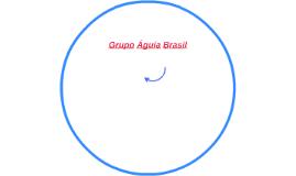 Grupo Águia Brasil