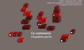Copy of L'e-commerce cinquième partie