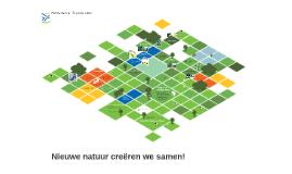 Programma Nieuwe Natuur
