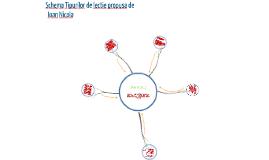 Copy of Copy of Tipuri de lectie