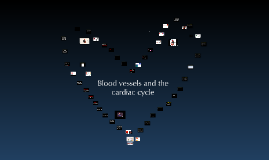 Blood vessels, the cardiac cycle & Atherosclerosis