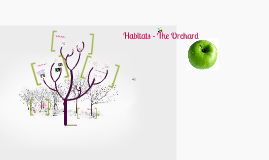 Copy of Habitats - The Orchard