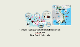 Vietnam Healthcare and Cultural Immersion