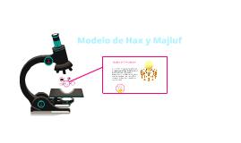 modelo de hax  y majluf