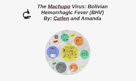 Copy of The Machupo Virus: Bolivian Hemorrhagic Fever (BHV)