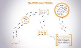 SUSTENTACIÓN PRÁCTICAS CICLO TÉNICO