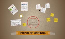 POLVO DE MORINGA