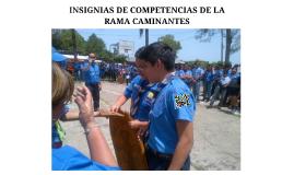 INSIGNIAS DE COMPETENCIAS