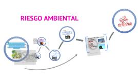 Copy of RIESGO AMBIENTAL