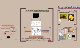 T6BV2019 Basidiomicetos para Biotecnología
