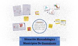 Situación Mercadologica Municipios De Guanajuato