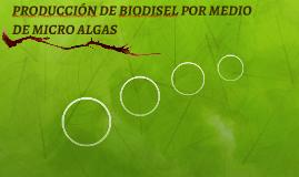 PRODUCCIÓN DE BIODISEL POR MEDIO DE MICRO ALGAS