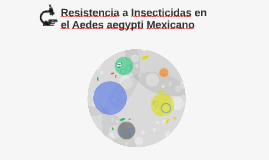 Resistencia a Insecticidas en el Aedes aegypti Mexicano