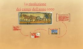 La rivoluzione dei campi dell'anno 1000