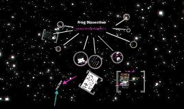Frog Dissection Nathalia