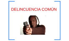 DELINCUENCIA COMÚN