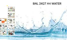 BNL 2KGT 2b H4 Water
