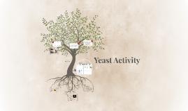 Yeast Activity