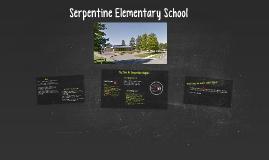 Serpentine Elementary School