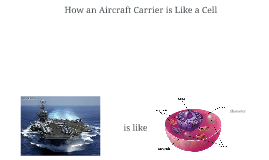 How an Aircraft Carrier is Like a Cell