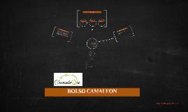 BOLSO CAMALEON