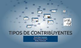 TIPOS DE CONTRIBUYENTES