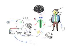 Copy of 신경계