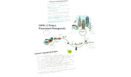 CAPM: 12 Project Procurement Mgt