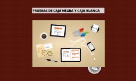 PRUEBAS DE CAJA NEGRA Y CAJA BLANCA