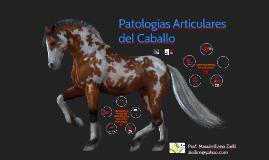 Patologías Articulares del Caballo